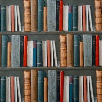 Novel shortlist 2021
